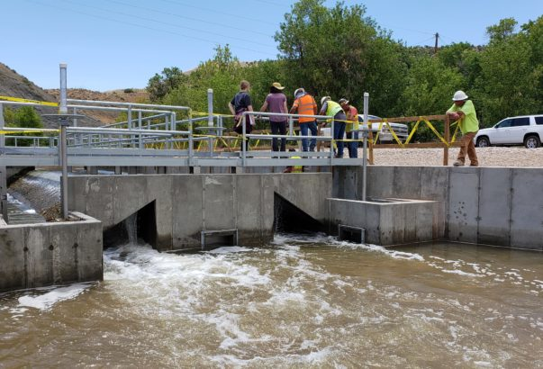 HAL helps protect endangered fish in Colorado River